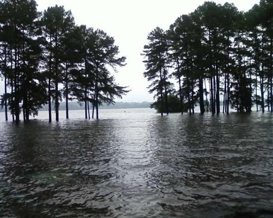 Lake allatoona water levels soar past full pool at lake for Lake acworth fishing