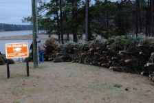 US Army Corps of Engineers rangers and volunteers gathered to sinkChristmas trees in Lake Allatoona to attract fish ~ Photo Allatoona USACE