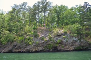 Tarzan is a myth.  You can get hurt swinging from vines and/or ropes off cliffs into Lake Allatoona.  ~~  Photograph by Robert Sutherland
